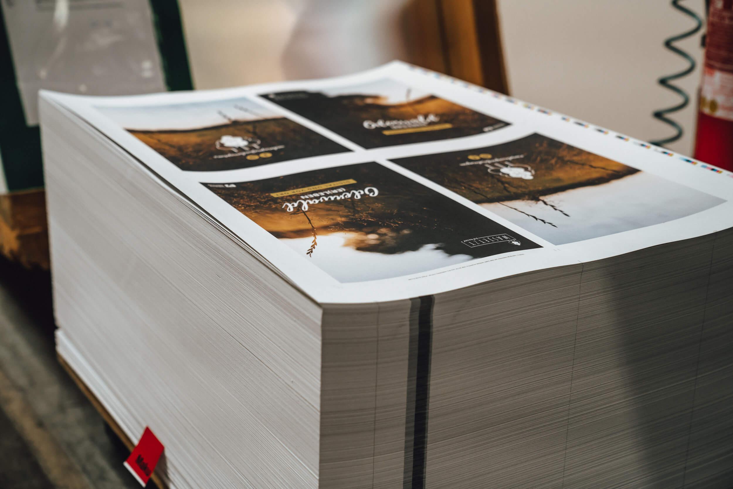 beltz-grafische-betriebe-broschüre